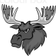 elodian's avatar