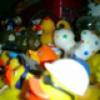 jellinde's Photo
