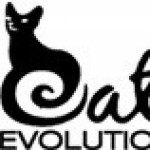 Profile picture of Cat Evolution