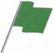 Profile photo of Green Flag