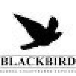 blackbirdlimo