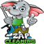 ZAP Cleaning