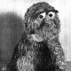 Phaent's avatar