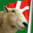 SheepNDane