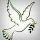 CCNezin's avatar
