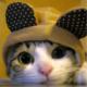 Veterok's avatar