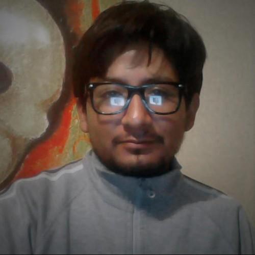 nelsonllajuayu2013 profile picture