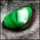LazyLeopard's avatar