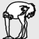 ostrich_policy's avatar