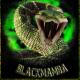 Blackmamba1977