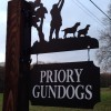 Free shotgun coaching-Kent - last post by jimmyb79