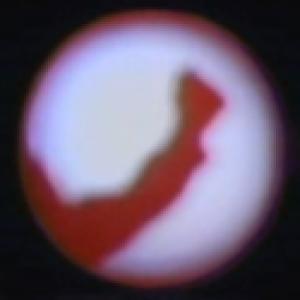 Avatar of flatluigi