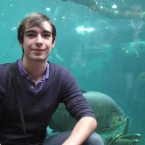 Profile picture for Cristian Andrei