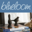 blueloom