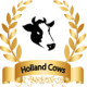 holland cows