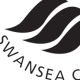 Profile picture of swansea-city