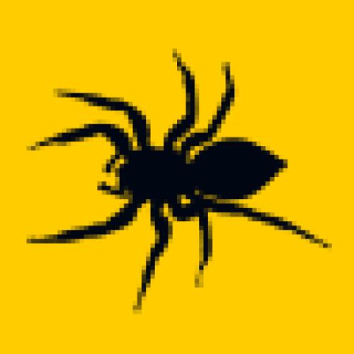 jwoelper profile picture