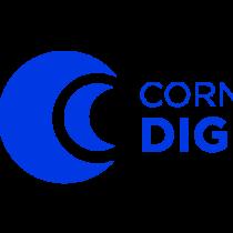 Cornerstonedigital's picture