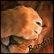 bardiir