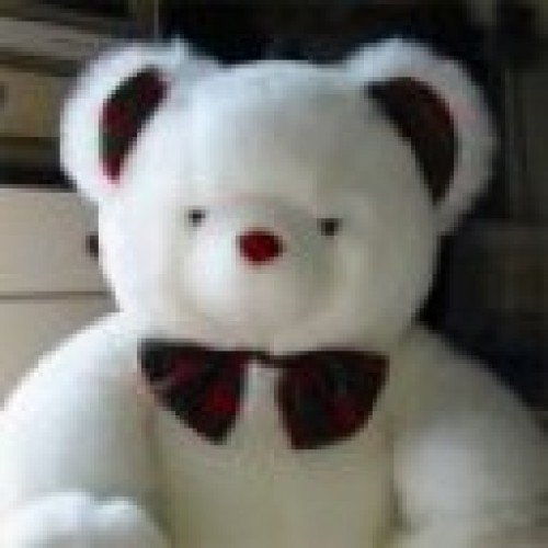 MartinSStoller profile picture