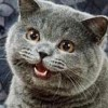 g00dness's avatar