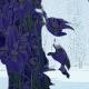 Paul 's Avatar (by Gravatar)