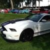 2014 Gt500 Build Numbers - last post by Roger Sheak