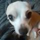 ZeronNTheXeon's avatar