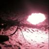 Yukon Ranger 5x42 - last post by JDBenelliM1