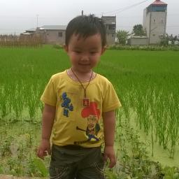 Tô Quang Hiệp Admin