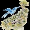 vénuzia