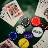 dealer1xbitlive's Photo