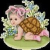 krikri tortue