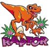 Raptor&#39;s Photo