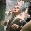 Legolas Thranduilion
