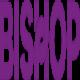 bishopliftingservices