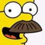 Profile picture of Ned Flanders