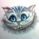 CTAPbIu_MABP аватар