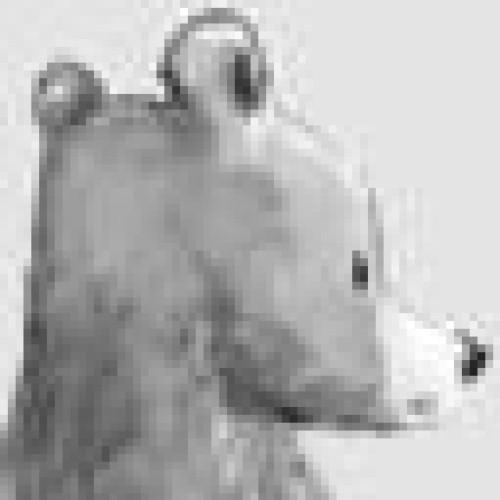 schluenderfritz profile picture