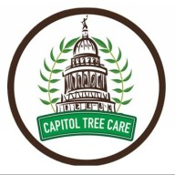 Capitol Tree Care