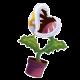 Kingboo177's avatar