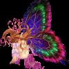 Το avatar του χρήστη kallioph