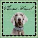 ClassicHound's Photo