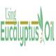 eucalyptus143's Avatar