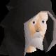 dumbitdownjr's avatar