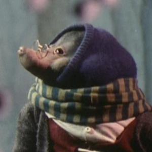 Profile picture for chewiebri