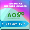 Profile photo of turbotaxsupport