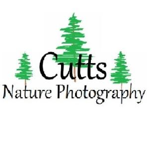 David  Cutts