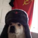 Аватар пользователя Gendzy