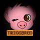 CheezyPigDev's avatar
